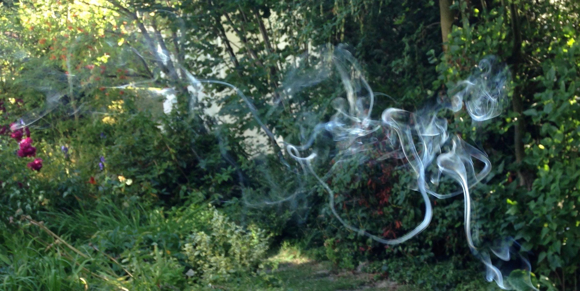 graue Rauchschwaden ziehen durch den grünen Garten